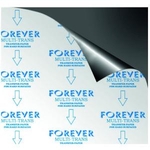 Transfer Forever Multi-trans