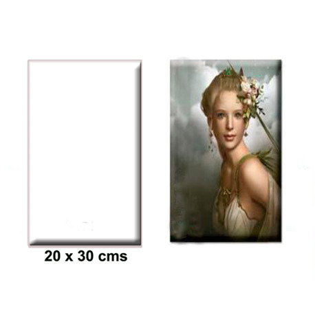 Azulejo 20 x 30 cm Blanco Brillo Sublimación - Vinilos y Serigrafía